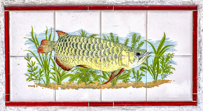 Tiled frieze depicting the mighty Arowana fish, on a garden wall in Geylang.